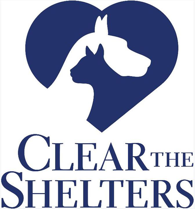 clear the shelters