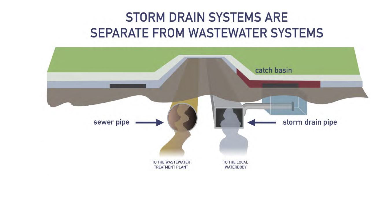 Storm drains vs  wastewater