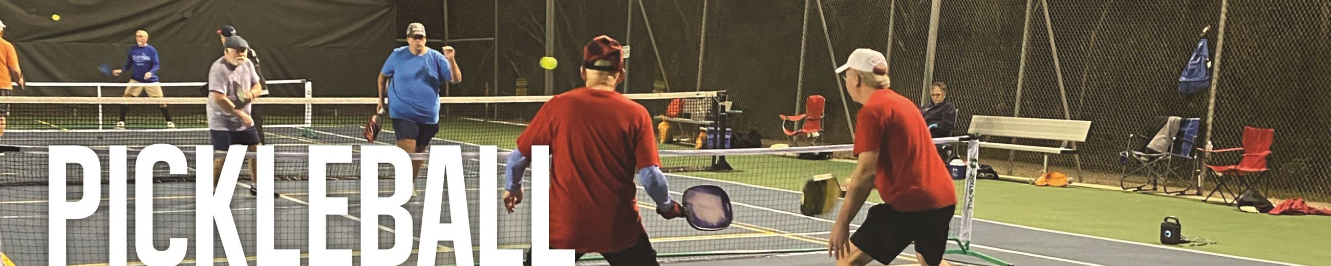 Pickleball Webpage Graphic-02