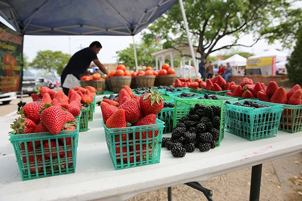 Mesquite Marketplace-Farmers Market-Downtown-web